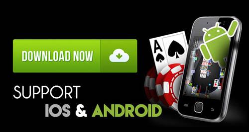 Judi Kartu Online Android dan IOS